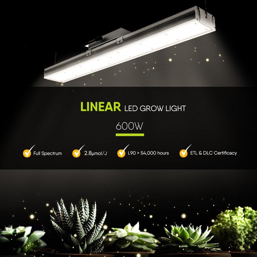 Linear 600W LED grow light full spectrum