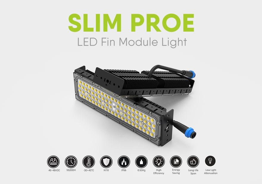 50W Slim ProE LED Module Light