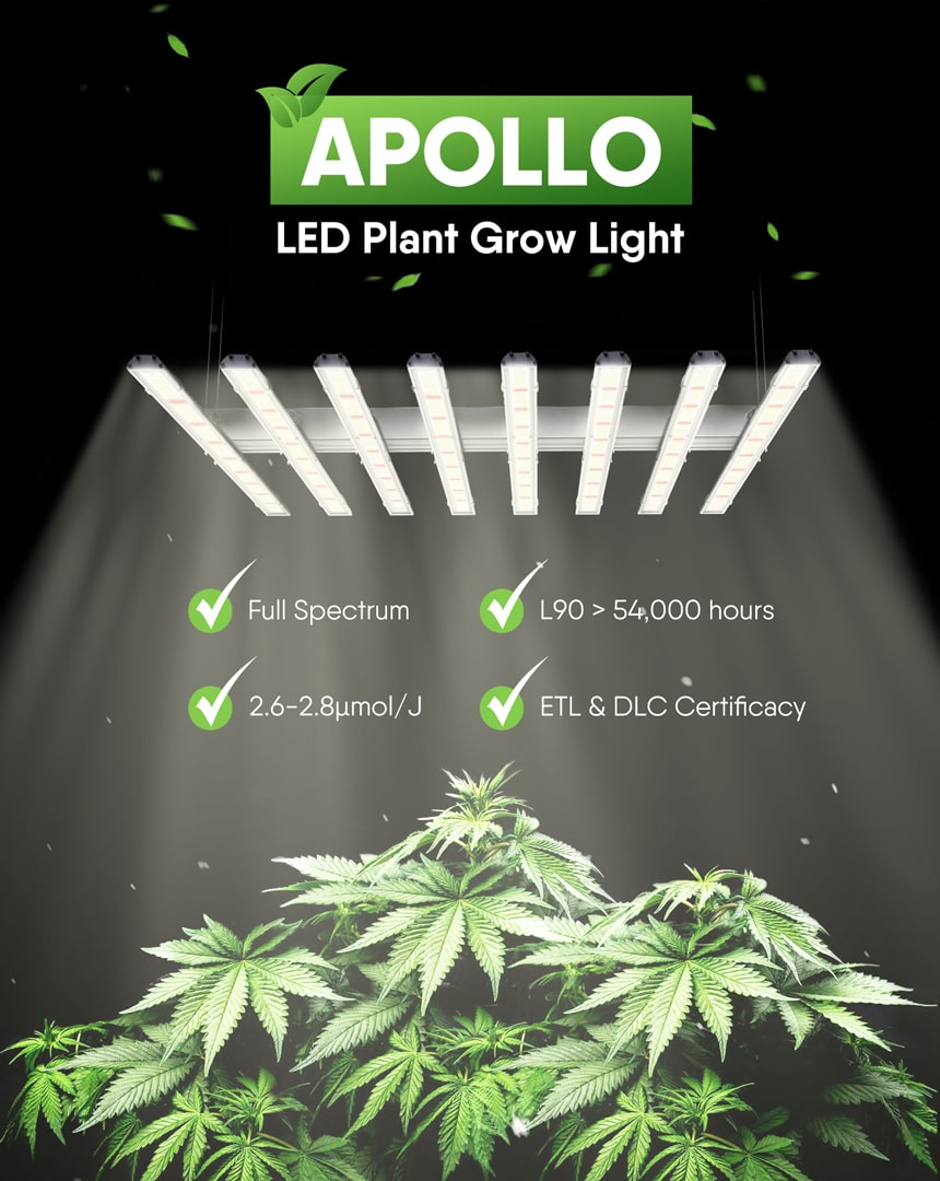 800w led grow light poster