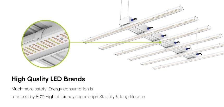 Introduce LED grow light lamp beads