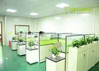 LED Lights Manufacturer In China