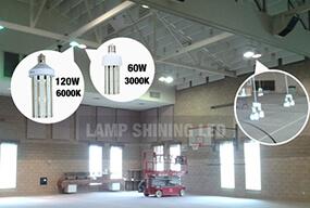 The dual lamp 120 watt and 60 watt Coen lamps replacing 880w