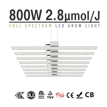 800 Watt LED Grow Light, apollo 6 led plant lights, Indoor Plant Lighting sale