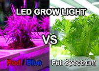 Red and Blue vs Full Spectrum White LED Grow Light